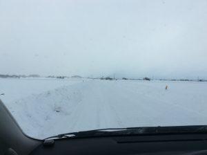 雪深い青森、これでも今年は少ないし暖かいよ~って・・・